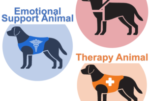 emotional support dog - service support therapy