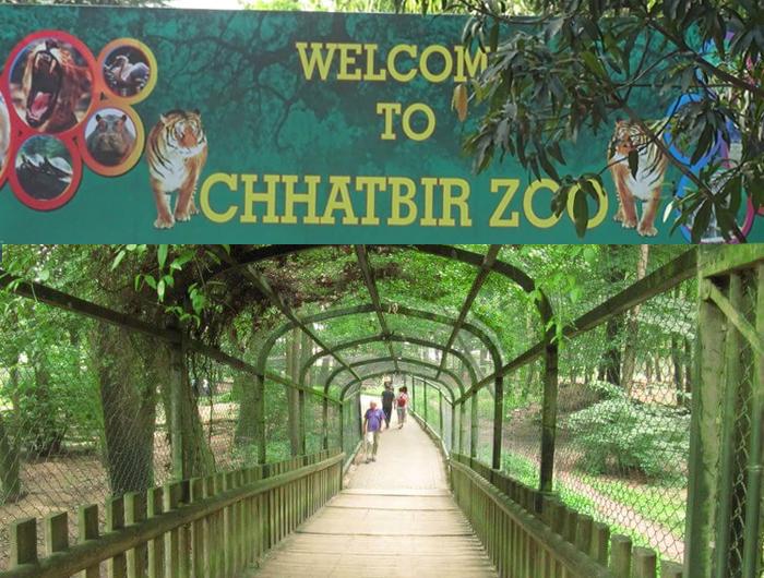 Chhatbir zoo - the city beautiful Chandigarh