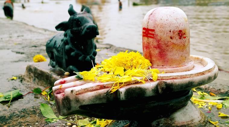 Shivji puja - Maha Shivratri