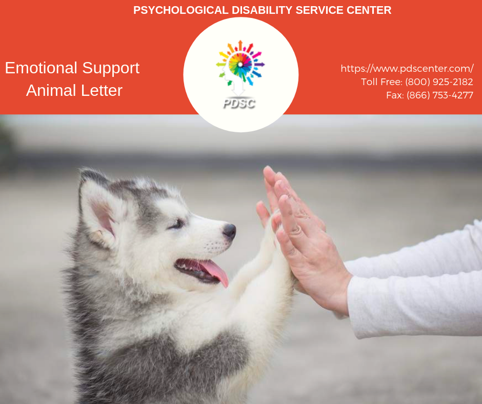 How_to_get_emotional_support_animal_letter